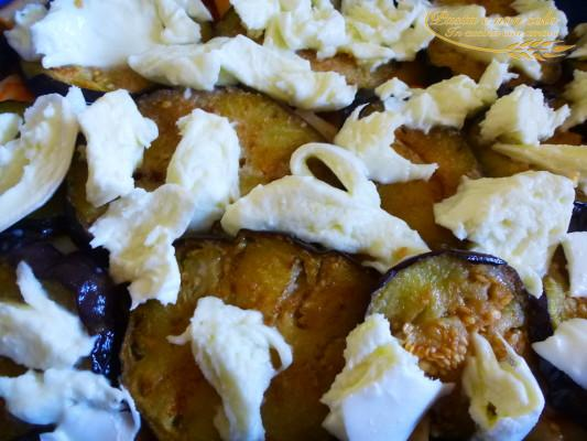 Canneroni melanzane e mozzarella di bufala alforno