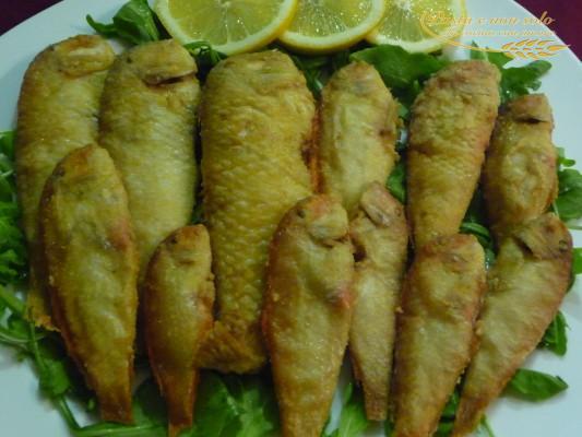 Frittura di surici o pesce pettine