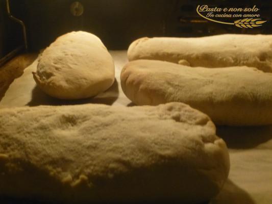 panini arabi con pasta madre